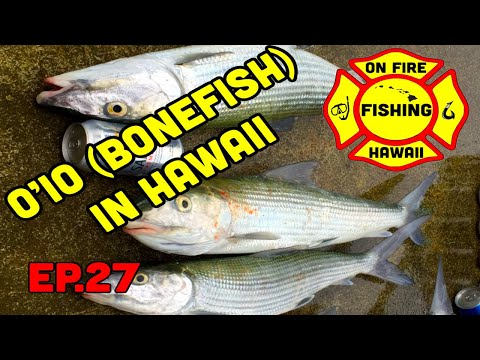 Oio (Bonefish) Fishing In Hawaii, ON FIRE FISHING HAWAII, EP. 27,
