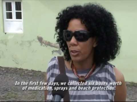 Cape Verde Dengue Fever News Report