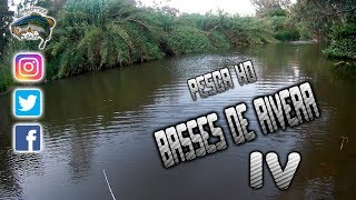 BASSES DE RIVERA 4 // BASS OF RIVER 4