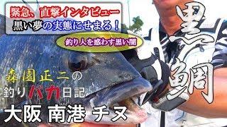 黒鯛 チヌ フカセ釣り で大物を狙う!「森園正二の釣りバカ日記」第5回 ...