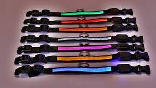 Led Light Up Glow Pet / Dog Collars