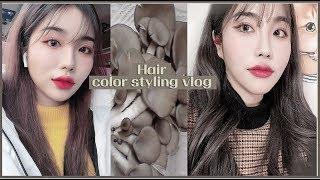 **[vlog] 최신 트렌드 컬러 '느타리버섯' 염색하고 왔어용 ㅋㅋㅋㅋㅋ