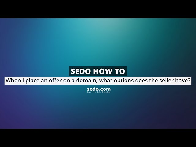 When I place an offer on a domain what options does the seller have?