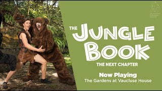 The Jungle Book, The Next Chapter - Now Playing