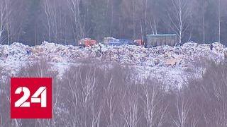На ликвидацию незаконной свалки в Шереметьеве потратят полтора миллиарда рублей