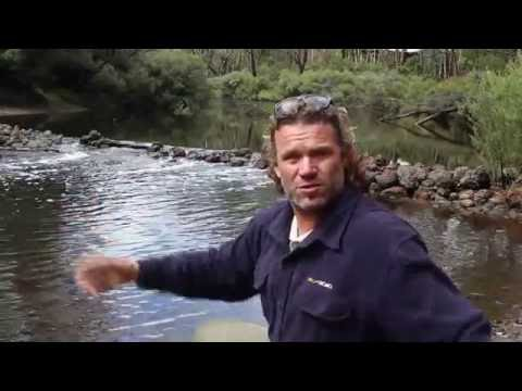 World Rivers Day 2016 - the Blackwood River, Western Australia