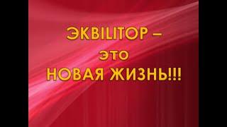 #РЕАЛ 225 ЭКВилиТОР. Кто виноват и что делать? - 3