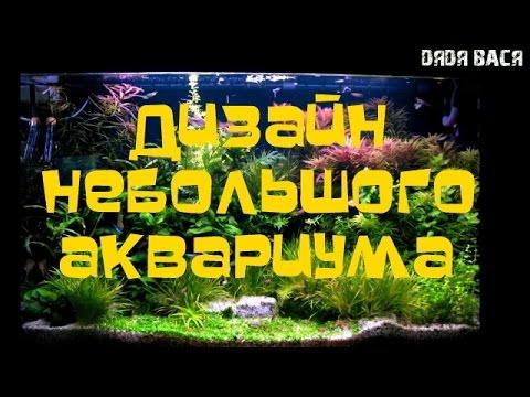 Дизайн аквариума на 100 литров от Tropica