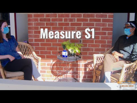Measure S1: Explainer
