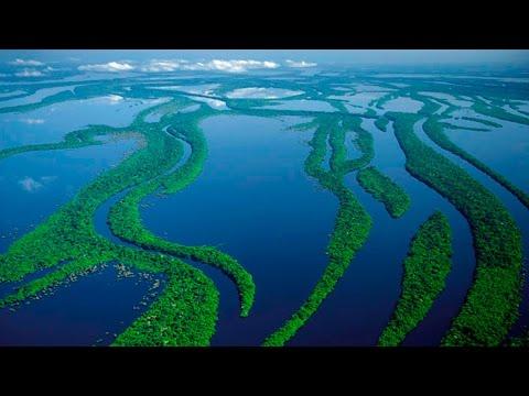 На столько ли опасна самая длинная река в мире Амазонка