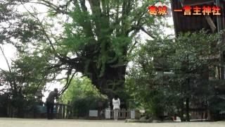 奈良県のパワースポット 葛城 一言主神社