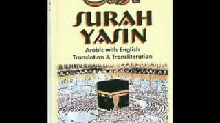 SURAH YASIN  QURAN Audio urdu hindi translation wmv   YouTube
