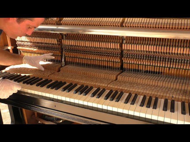 שיפוץ פסנתר מתחילת מאה ה-20, חלק 4 (חידוש קלידי פסנתר)