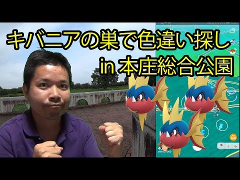 【ポケモンGO】キバニアの巣で色違いを狙う! in 本庄総合公園