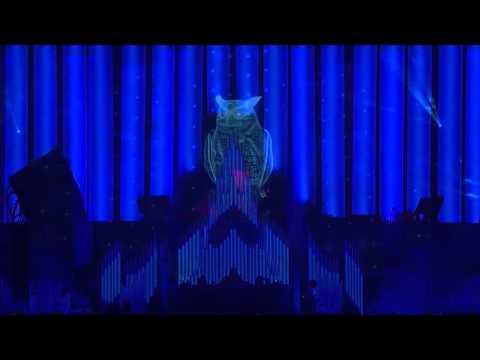 Laidback Luke live at EDC Las Vegas 2014