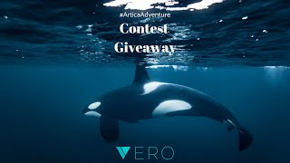 Win 1 of 4 Spots on our #ArticaAdventure to Snorkel with Orcas in the Norwegian Arctic!