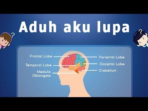Kenapa Otak Kita Sering Lupa?