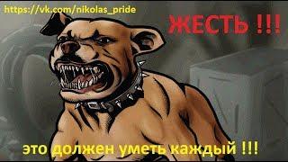 ПИТБУЛЬТЕРЬЕР (техника безопасности)