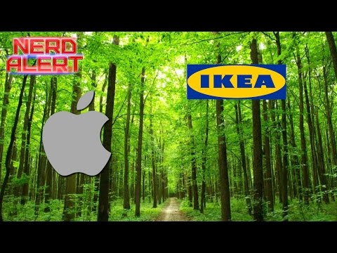 Ikea and Apple Are Buying Massive Amounts of Forest Land