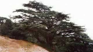 Jad Nakhle - Liban al Helo