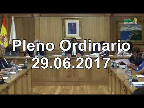 Pleno ordinario 29 06