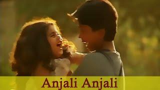 Anjali Anjali - Revathi, Raghuvaran, Baby Shamili - Anjali - Tamil Song