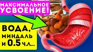 ЧТО ТВОРЯТ 10 моченых миндальных орехов с телом Замочи с