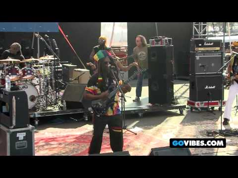 Steel Pulse Performs