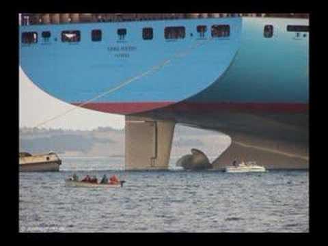 Big Ship - Emma Maersk, Wal-Mart gets its stuff from China