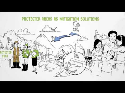 Protected Areas are Natural Solutions to Climate Change