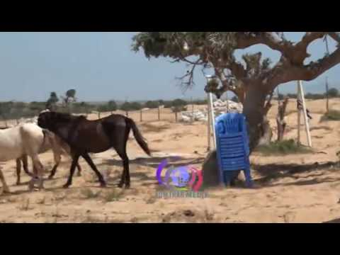The Capital of Somalia-Mogadishu City 2016 - YouTube