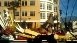 ROSE PARADE 2014:  K9s4COPS (great dog!)