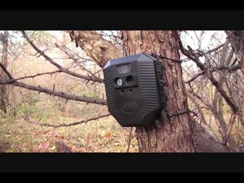 Wildgame Innovations Digital Game Scouting Camerawmv Youtube