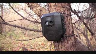 Wildgame Innovations Digital Game Scouting Camera.wmv