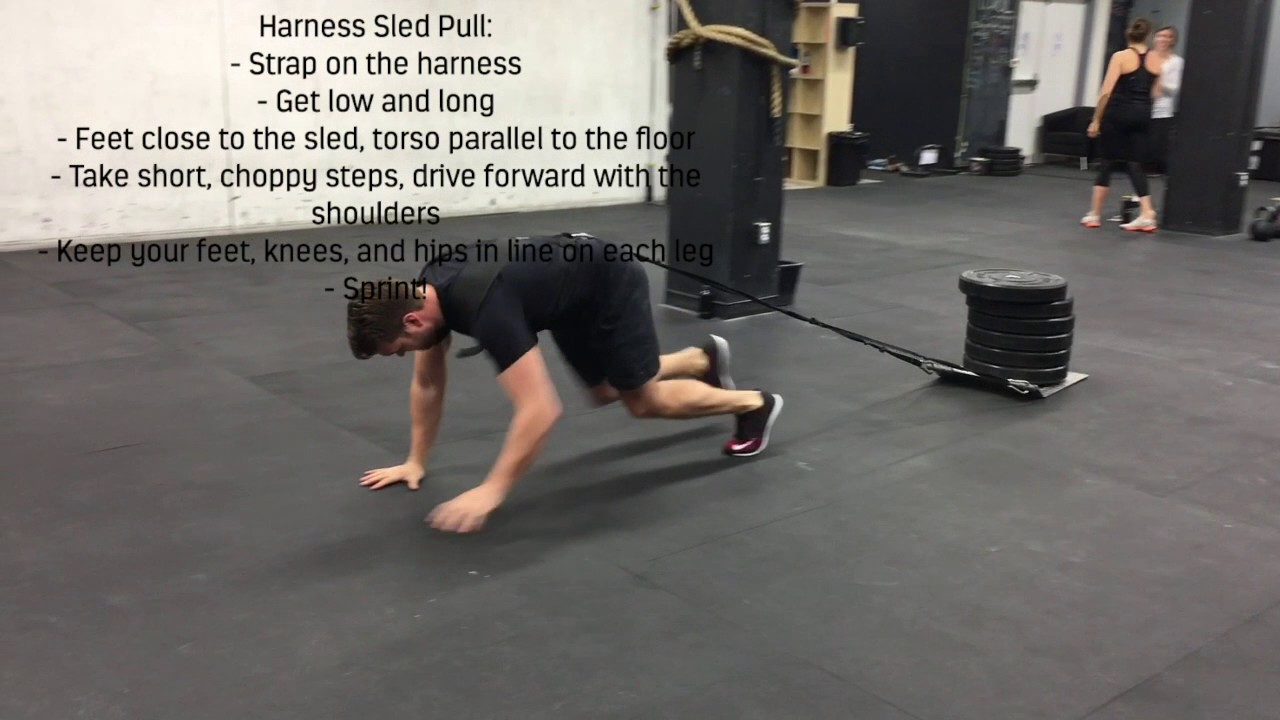 Harness Sled Pull Youtube