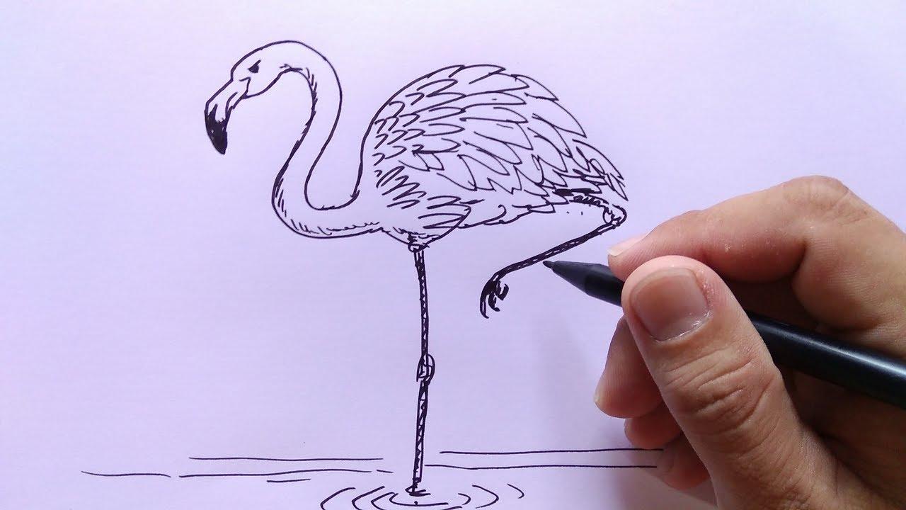 Cara Menggambar Burung Flaminggo