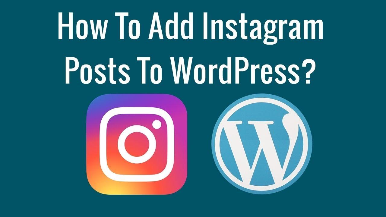 How To Add Instagram Posts To WordPress?