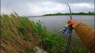 Рыба не перестаёт клевать Ловля карпа Попали в ураган Такого у нас еще не было