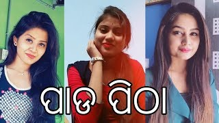 Tik Tok Best of ପାଡ ପିଠା || Stupid GS Odia