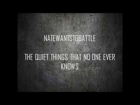 NateWantsToBattle | The Quiet Things That No One Ever Knows (Lyrics Video)