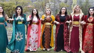 Kürtçe Halay Potpori (Grani)