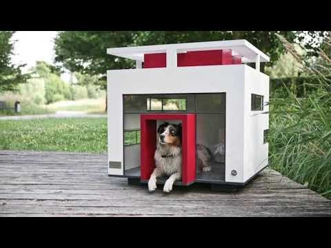 DIY HOUSES FOR DOGS