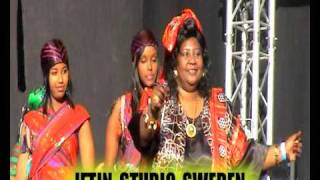 SOMALI MUSIC ( FADUMA QASSIM  ) FESTIVAL NORWAY (Part  1 ) IFTINFF.avi
