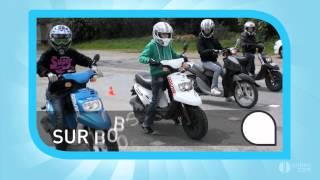 AUTO-ECOLE FEU VERT : PERMIS DE CONDUIRE AUX LUCS SUR BOULOGNE  (85)