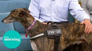 The Ghostbusting Greyhound Who Catches Ghouls | This Morning