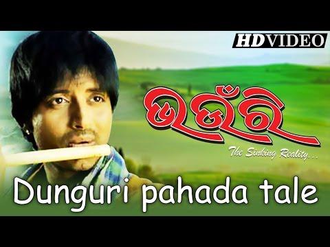 DUNGURI PAHADA TALE | Romantic Film Song I BHAUNRI I Arindam, Ritesh, Bidita Bag, Atipriya