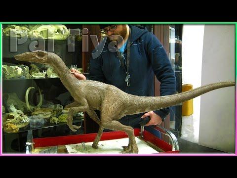 Velociraptor Sculpture in the making!