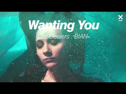 Cat Dealers, BIAN – Wanting You