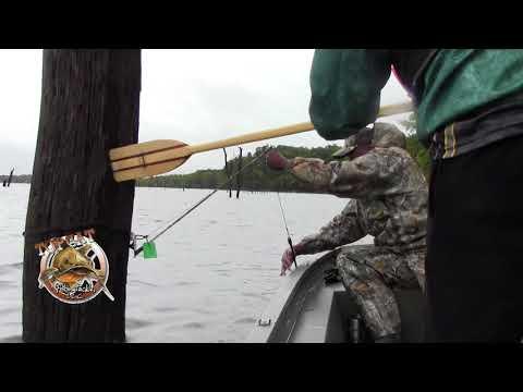 Kansas Fall 2017 Topcat Flathead Catfishing