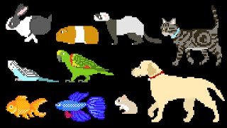 Pets - Dog, Cat, Rabbit, Fish, Birds, Hamster & More - The Kids